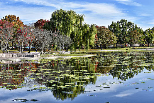 Constitution Gardens on the National Mall by Brendan Reals