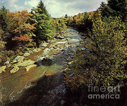 Cool Autumn Scene  by Ruth Housley