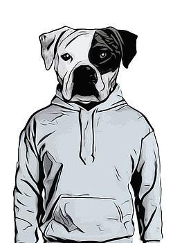 Cool Dog by Nicklas Gustafsson