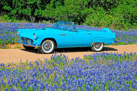 Cool in the Blue by Robert Anschutz