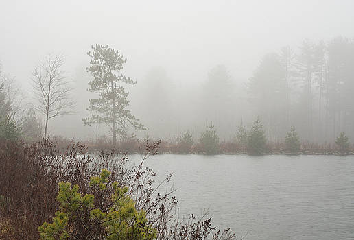 Cooper Lake Foggy Morning by Nancy de Flon