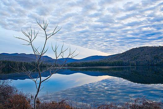 Cooper Lake Grunge by Nancy de Flon