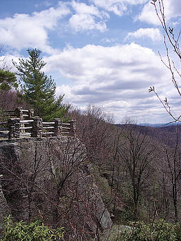 Coopers Rock - 14 by Donovan Hubbard