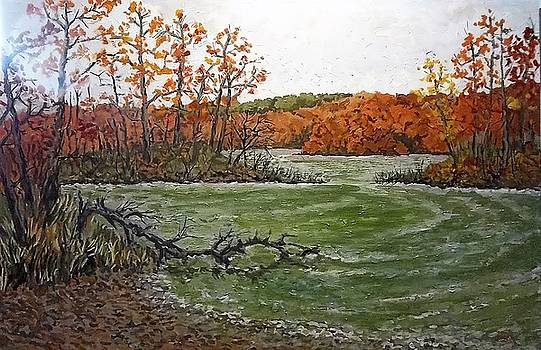 Cootes from Princess Point by Fred Urron