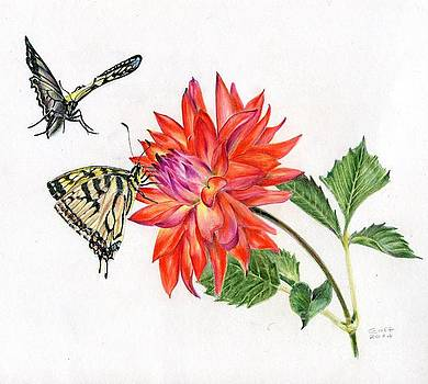 Coral Dahlia with Monarch Butterfly by Penrith Goff