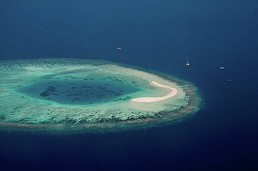 Jenny Rainbow - Coral Reef from Above