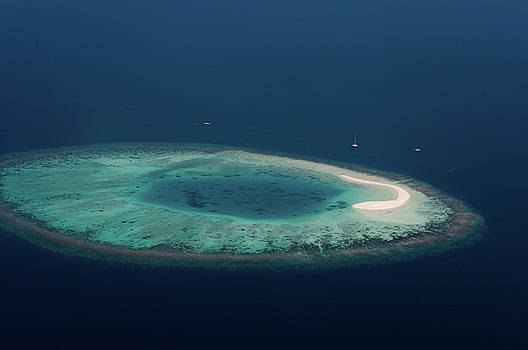 Jenny Rainbow - Coral Reef in the Blue Ocean. Maldives