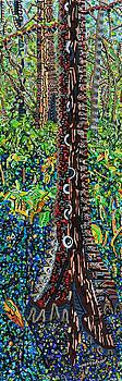 Corkscrew Swamp Sanctuary 2 by Micah Mullen