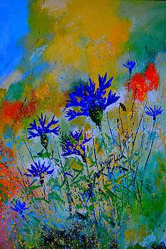 Cornflowers 106 by Pol Ledent