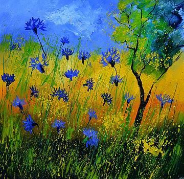 Cornflowers 777110 by Pol Ledent