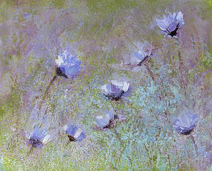 Cornflowers by Natalya Shvetsky