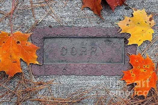 Corry Brick by Carol Fielding