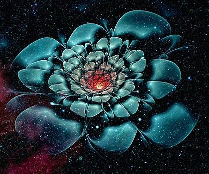 Anastasiya Malakhova - Cosmic Flower
