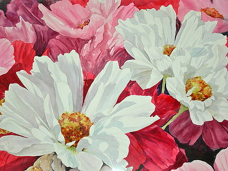 Cosmos Up Close by Becky Taylor