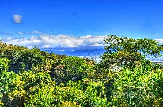 Costa Rica Landscape by Debbi Granruth