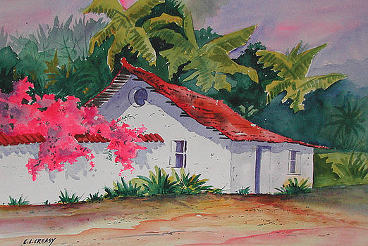Costa Rican cottage by Chuck Creasy