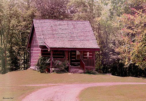 cottage in the Mist by Bonnie Willis