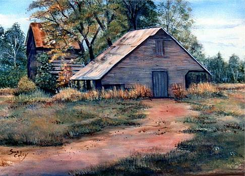 Country Barns by Sue Coley