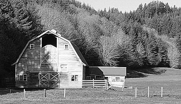 Country Charm by Suzy Piatt