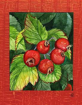 Country Crab Apples by Carrie Auwaerter