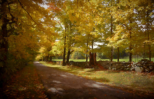 Country Lane by Lee Fortier