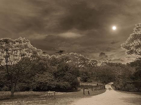 Country Moonlight by Beto Machado