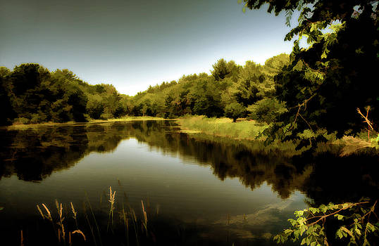 Country Pond by Lee Fortier