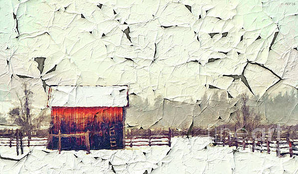 Country Ranch And Peeling Paint by Phil Perkins