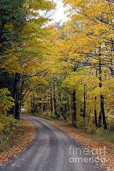 Country Road by Margaret Hamilton