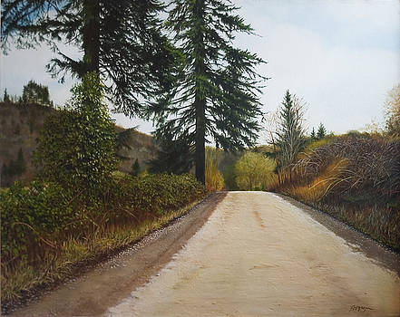 Country Road by Richard Ferguson