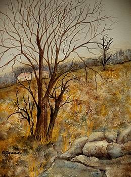 Country Scrubland by Constance Larimer