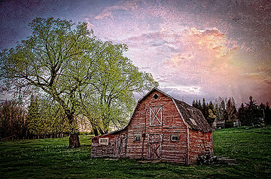 Country Spring by Steve  Milner
