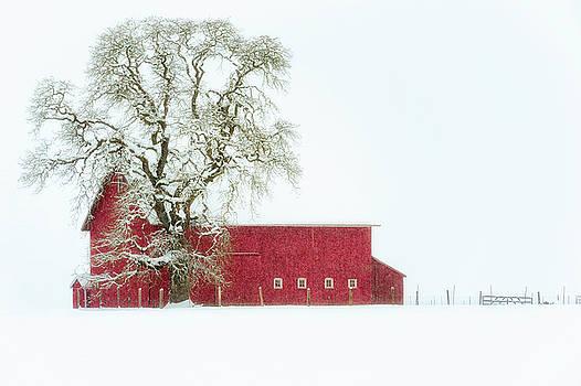 Winter Farm Landscape by Dee Browning
