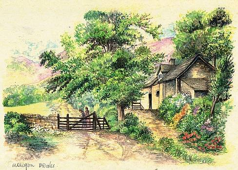 Countryside 1 by Morgan Fitzsimons