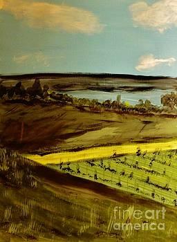 countryside/VINEYARD by Marie Bulger