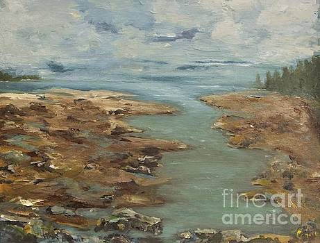 Cove at Low Tide by Chaline Ouellet