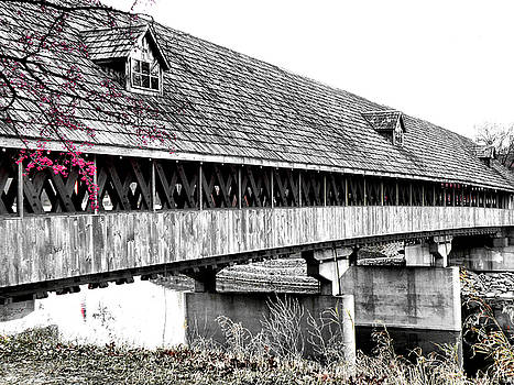 Scott Hovind - Covered Bridge 2