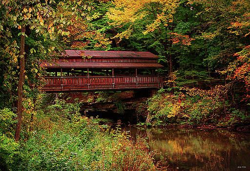 Covered Bridge - Mill Creek Park by George Bostian