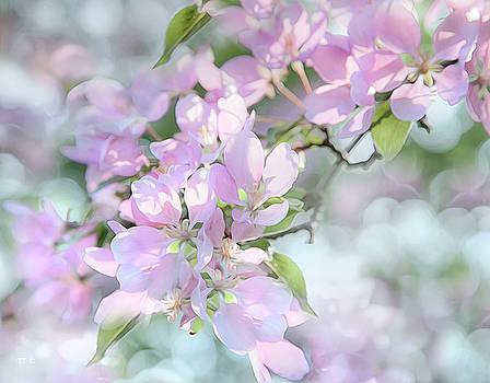 Crab Apple Blossoms by Theresa Tahara