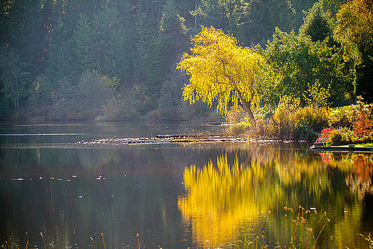 Cranberry Lake in the Fall by Danielle Silveira