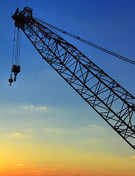 Crane At Sunset by Daphne Sampson