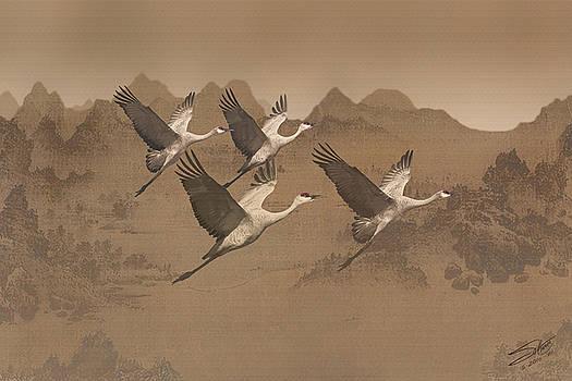 Cranes Migrating Over Mongolia by Matt Schwartz