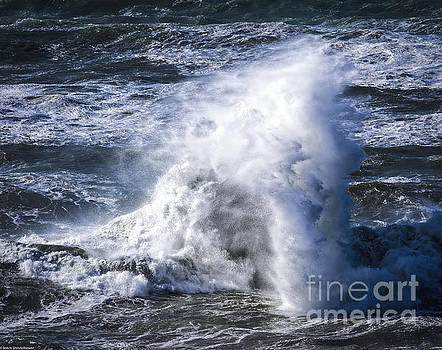 Crashing Wave by Mitch Shindelbower