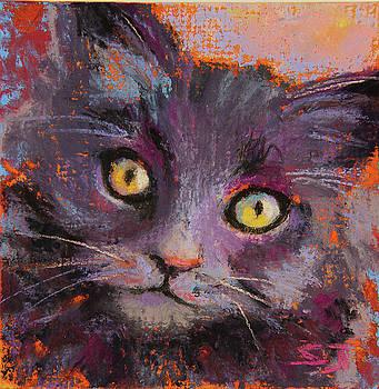 Crazy Cat Black Kitty by Susan Jenkins