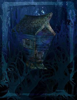 Crazy House by Barbara Ki