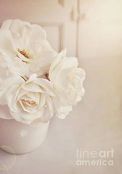 Cream roses in vase by Lyn Randle