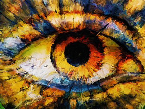 Creations Eye by William Wooding