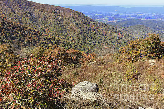 Crescent Rock Overlook on Skyline Drive in Shenandoah National Park by Louise Heusinkveld