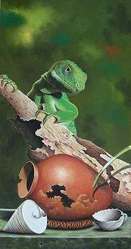 Crested Iguana by Pravin  Sen