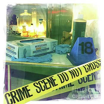 Crime Scene Do Not Cross by Nina Prommer